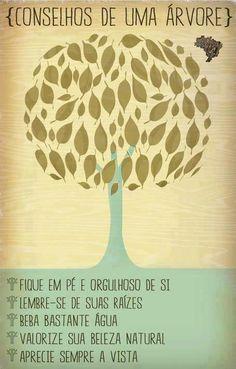 Conselhos de uma árvore ... <3