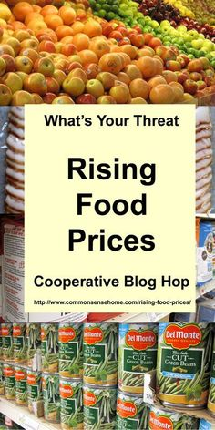 Rising Food Prices - What's causing the food price increases, and what steps you can take to stretch your food dollars in the months to come.