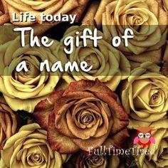 Imagem gratis no Pixabay - Rosas, Flores, Red, Planta Purple Roses, White Roses, Valentine Love, Rose Violette, Photocollage, Romantic Roses, Yellow And Brown, Black White, Pretty Black