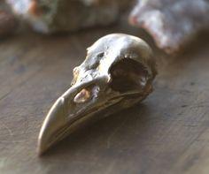 Raven skull, brass mold, natural bird bones, Corvus corax,solid metal bird scull,raven head,heavy bird head,brass bird head,halloween figure - pinned by pin4etsy.com