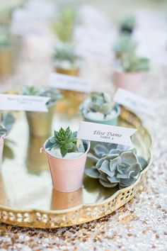 succulent escort cards - photo by Anna Marks Photography http://ruffledblog.com/santa-barbara-destination-wedding-with-succulents