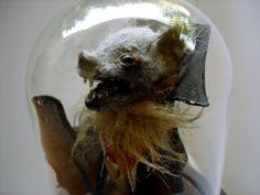 William Bezek the Artist: TAXIDERMY VAMPIRE BAT UNDER GLASS