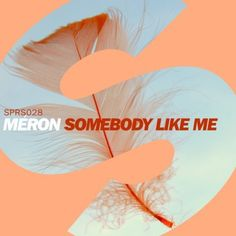 Meron - Somebody Like Me (Original Mix) - http://dirtydutchhouse.com/album/meron-somebody-like-original-mix/