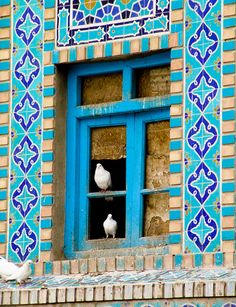 Two White Pigeons: shot in Mazar-e-Sharif, in the north of Afghanistan.
