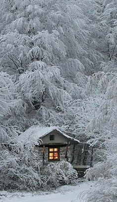 Idyllic cabin in Bulgaria • photo: taurus13 on 1X