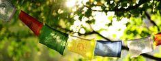 Buddhas Weg - buddhistisches Kloster, Seminar- & Gästehaus und Gesundheitszentrum mitten im Odenwald nahe Mannheim und Heidelberg. | Buddhas Weg | Bei Mannheim, Heidelberg, Darmstadt, Bergstraße, Heppenheim