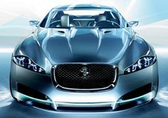 Jaguar <3