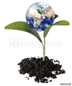 Earth. 3D. Ecology Elements of this image furnished by NASA.