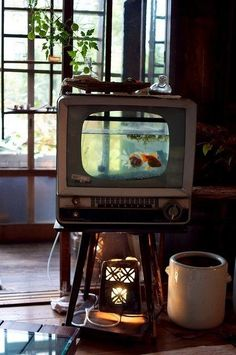 Vintage TV used as a fishbowl