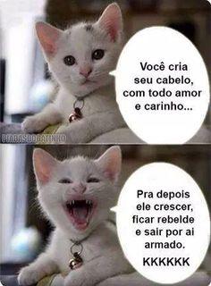 Oh my goodness hahahaha Memes Humor, Cat Memes, Funny Memes, Jokes, Gato Do Face, 4 Panel Life, Good Humor, Whatsapp Messenger, Try Not To Laugh