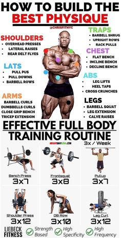 Ectomorph Workout – 3 Workout Secrets to Build Muscle For Skinny Ectomorphs Fitness Workouts, Weight Training Workouts, Gym Workout Tips, Sport Fitness, Workout Challenge, Workout Men, Model Workout, Girl Workout, Body Weight Training