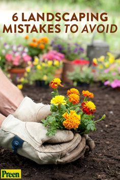 Whether you're new to gardening or and old pro, you'll want to watch out for these common mistakes in the your landscape and garden. Potager Garden, Garden Shrubs, Herb Garden, Garden Drawing, Garden Art, Small Flower Pots, Flower Beds, Easy Garden, Garden Ideas
