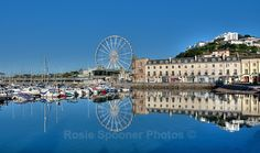 Perfect reflections early morning Torquay Harbour - Torbay