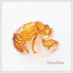 セミの抜け殻プラバン #shrinkplastic #cicada #pins #brooch #shrinkydinks  #プラバン #プラ板