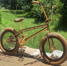 Mt Bike, Bmx Bicycle, Bmx Gear, Bmx Bandits, Haro Bmx, Bicycle Painting, Cute Puppies, Cycling, Surfing