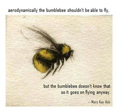 """Aerodynamically the Bumblebee shouldn't be able to Fly .... "" Mary Kay Ash Quote ...."