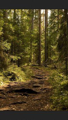 Espoo National Park Finland
