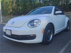 The navy blue top completes this bug. Beetle Convertible, Jack Daniels, Blue Tops, Volkswagen, Navy Blue, Blue Tank Tops