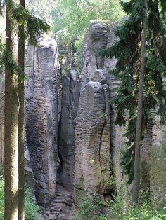 Český ráj, skály Caves, Trunks, Plants, Drift Wood, Tree Trunks, Blanket Forts, Plant, Cave, Planets