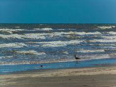 Texas Gulf Coast - Galveston State Park