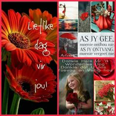 Valentine Day Gifts, Holiday Gifts, Valentines, Lekker Dag, Afrikaanse Quotes, Goeie More, Special Quotes, Prayer Quotes, Parent Gifts