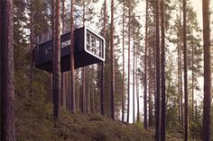 Treehotel is a Swedish hotel that proposed an insolite experience near the Lule River : in rooms suspended in tree. This hotel offers six different cabins to sl Treehouse Hotel, Backyard Treehouse, Cool Tree Houses, In The Tree, Big Tree, Glamping, Tiny House, Places To Go, Around The Worlds