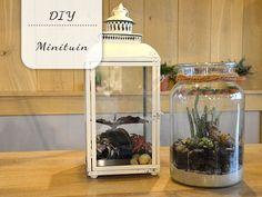 DIY: Minituintjes voor in huis - My Simply Special