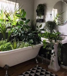 80 DIY Plant Stand Ideas To Fill Your Room With Greenery These trendy HomeDecor ideas would gain you amazing compliments. Check out our gallery for more ideas these are trendy this year. Decoration Plante, Living Vintage, Plants Are Friends, Diy Plant Stand, Bathroom Plants, Green Bathrooms, Plant Care, Plant Decor, Houseplants