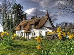 Adorable Thatched Roof Fairy Tale Cottage