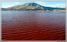 Blood Lagoon