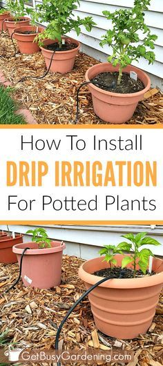 An automatic watering system for outdoor plants makes life easier, and saves you tons of time. Follow these easy step-by-step instructions to install a DIY drip irrigation system for your potted plants.