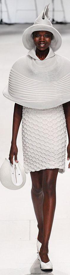 Spring 2015 Ready-to-Wear Issey Miyake http://www.stylebistro.com/runway/Issey+Miyake/Paris+Fashion+Week+Spring+2015/3ploosZnumj