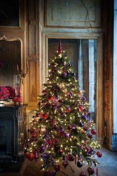 Christmas Tree Image http://picturingimages.com/christmas-tree-image-7/
