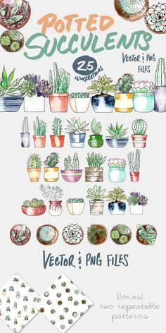 Potted Succulents Illustration Pack by plaidgecko on @creativemarket  --  FREE until Sunday, 06/11/17.