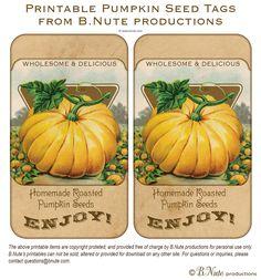 Free Printable Vintage Pumpkin Seed Tags and Roasted Pumpkin Seed Recipes