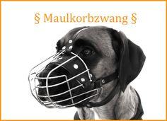 maulkorbzwang-leinenpflicht Anwalt für Hunde - Tierrechtsexperte RA Ackenheil http://www.der-tieranwalt.de