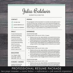 professional resume cv template mac or pc for word creative modern