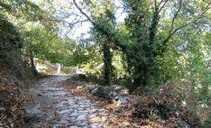 Περιπατητικές διαδρομές | Agiasos.gr Country Roads