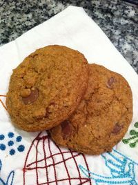 whole wheat chocolate chip cookies • in jennie's kitchen