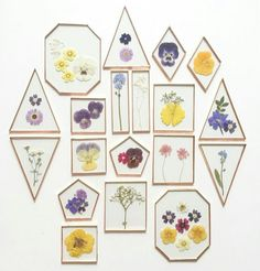 Stained Glass Framed Pressed Flowers, Terrariums, is part of Pressed flowers - Art Floral, Deco Floral, Cheap Home Decor, Diy Home Decor, Stained Glass Frames, Deco Cool, Diy And Crafts, Arts And Crafts, Diy Y Manualidades