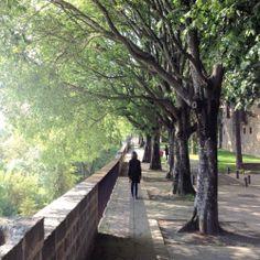 Mis paseos en ti II - Murallas de Pamplona