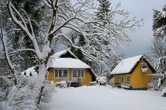 Wintermärchenhafter Anblick: Gästehaus Bergfalke in Ahrenshoop.