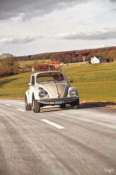 VW Beetle 1300 L by diddylux