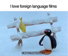 Really Funny Memes, Stupid Funny Memes, Funny Laugh, Funny Relatable Memes, Funny Posts, Funny Stuff, Random Stuff, Satire, Pingu Memes
