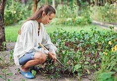 Labores básicas de la jardinería 2