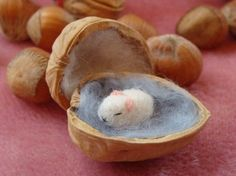 – Seite 5 von 12 – DIY Bastelideen Walnuts are healthy, but you can do great things with them! 11 DIY ideas with walnuts! – Page 5 of 12 – DIY craft ideas Needle Felted Animals, Felt Animals, Wet Felting, Needle Felting, Walnut Shell Crafts, Acorn Crafts, Waldorf Crafts, Felt Mouse, Felting Tutorials