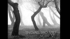 Tingvall Trio   Utsikt