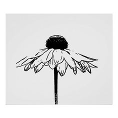 Flower Drawing Minimal Black and White Floral Drawing Poster; buy it on Zazzle Pencil Art Drawings, Doodle Drawings, Art Drawings Sketches, Cute Drawings, Disney Drawings, Unique Drawings, Minimal Drawings, Flower Sketches, Cool Simple Drawings