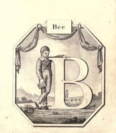 """Bee"" (B) ~ Vintage Children's ABC Flash Card"