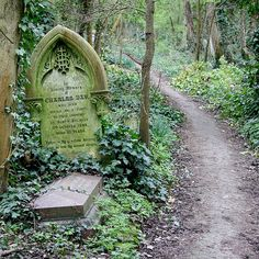 """on the """"path"""" of graves.by Leo Reynolds / Abney Park Cemetery / Stoke Newington, London, England, UK Cemetery Statues, Cemetery Headstones, Old Cemeteries, Cemetery Art, Graveyards, Angel Statues, Haunted Places, Abandoned Places, Haunted Houses"""